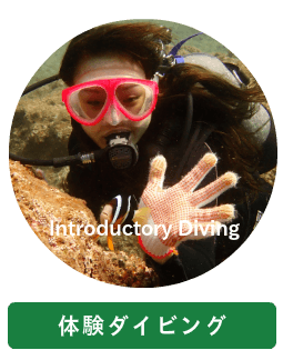 Introductory Diving
