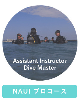 NAUI Assistant Instructor
